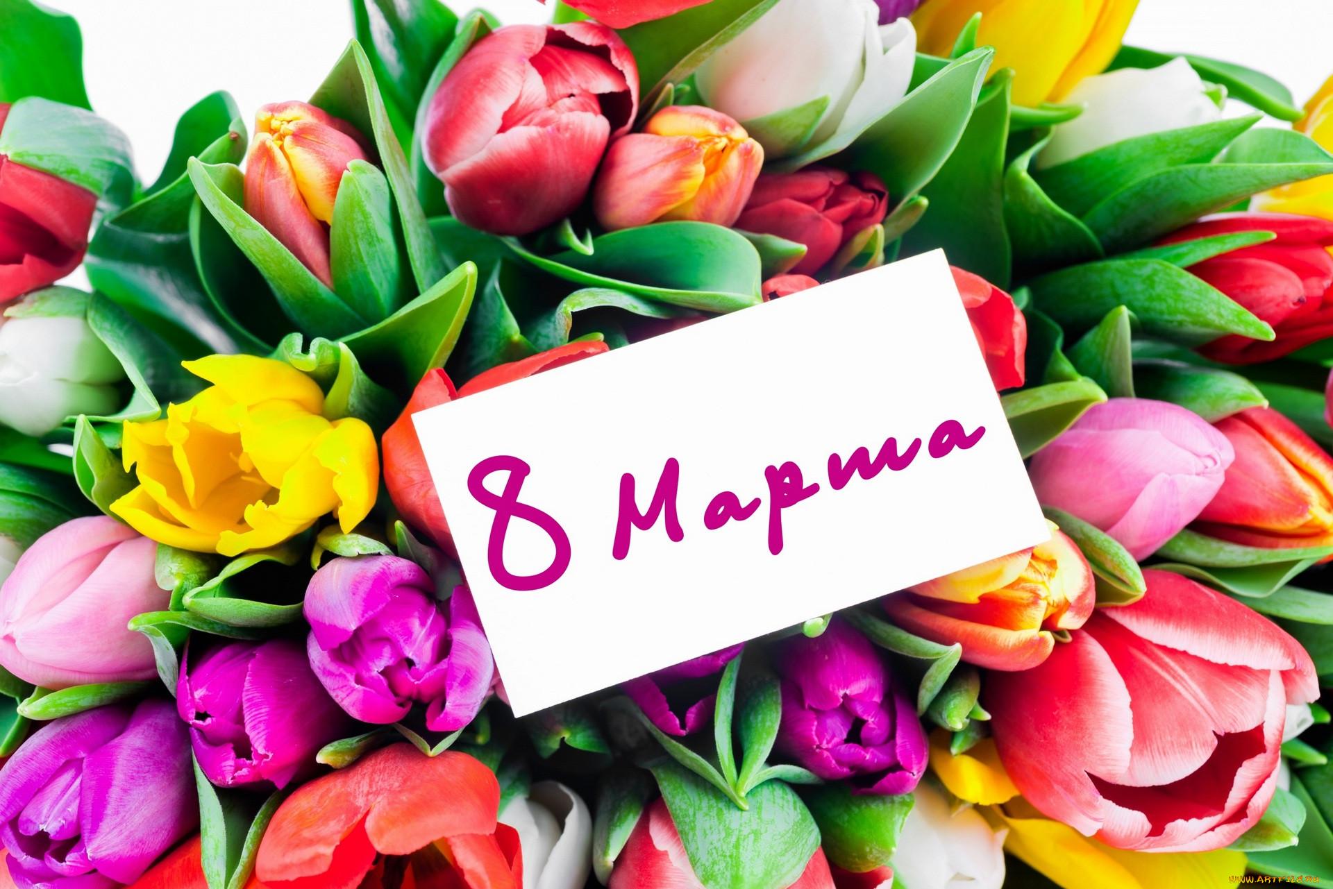 это, мягко цветы на восьмое марта фото скульптура